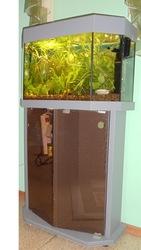 Продам аквариум  И всё к нему подходящее)