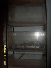 продаю аквариумы в хорошем состояние....................